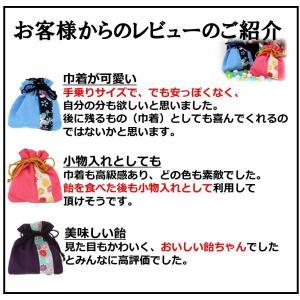 ホワイトデー ホワイトデーのお返し お菓子 プチギフト 雑貨 巾着京飴 〜ほのか 〜|iwaiseika|10