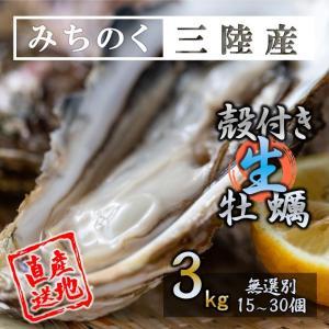 生食OK みちのく三陸産 殻付き生牡蠣 3kg 送料無料 バーベキュー 食欲の秋 新鮮 石巻 宮城 岩手 直送 焼く 蒸す 煮る 揚げる 等様々なお料理にも