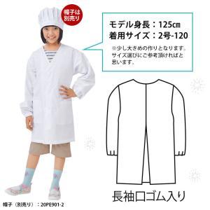 給食白衣 前ボタン 抗菌 学校給食 エプロン ...の詳細画像1