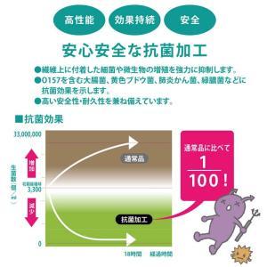 給食白衣 前ボタン 抗菌 学校給食 エプロン ...の詳細画像5