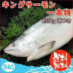 キングサーモン一本物 (頭無し)約3.3キロ 送料無料