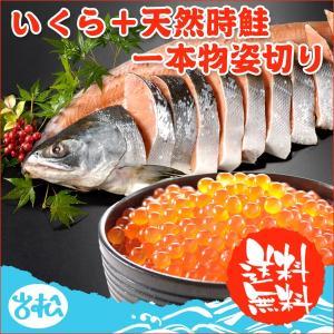 いくら+天然時鮭一本物姿切り 約2.3kg 送料無料|iwamatsu-salmon