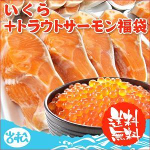 イクラ+トラウトサーモン5切 化粧箱入   送料無料  |iwamatsu-salmon