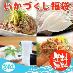 イカづくし福袋4点盛り  送料無料 |iwamatsu-salmon