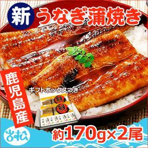 うなぎ 蒲焼 国産 送料無料 特大 約220g 2尾 特別 ラッピング プレゼント あすつく|iwamatsu-salmon