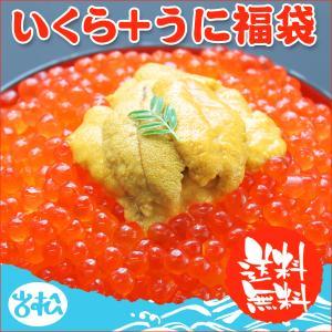 いくら 醤油漬け アラスカ 200g うに 100g 送料無料 福袋 ギフト あすつく|iwamatsu-salmon
