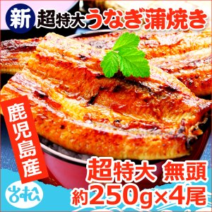 うなぎ 蒲焼 国産 送料無料 超特大 約250g×4尾