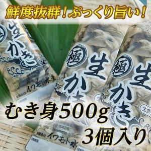 お買得・身の縮まない!瀬戸内相生産牡蠣のむき身500g3個入り|iwamotosuisan