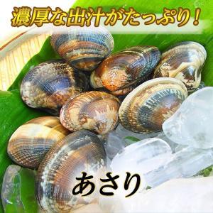 瀬戸内相生産活あさり(500g入り)|iwamotosuisan