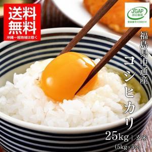 令和元年産  福島県 中通産 コシヒカリ 玄米 (5kg×5袋)  須賀川市産  JGAP 白米 米 こめ お米  25kg 米25kg ふくしまプライド。体感キャンペーン(お米)|iwaseno-kinnsyuumai