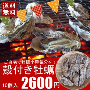 殻付き牡蠣(冷凍) 10個 三陸宮古産 加熱用 送料無料 同梱不可|iwatekensan-netshop