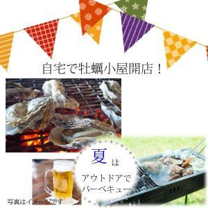 殻付き牡蠣(冷凍) 10個 三陸宮古産 加熱用 送料無料 同梱不可|iwatekensan-netshop|02