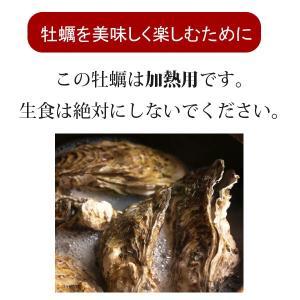 殻付き牡蠣(冷凍) 10個 三陸宮古産 加熱用 送料無料 同梱不可|iwatekensan-netshop|05
