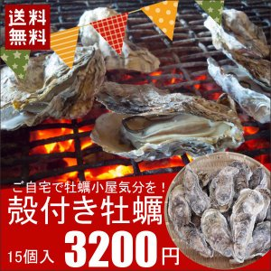 殻付き牡蠣(かき カキ) 15個 三陸 宮古産 自宅でカキ小屋気分を 送料無料 同梱不可 冷凍|iwatekensan-netshop