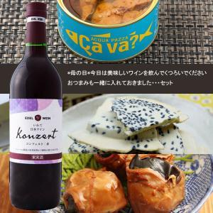 母の日 今日は美味しいワインを飲んでくつろいでください おつまみも一緒に入れておきました・・セット|iwatekensan-netshop