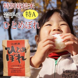 新米29年度産 特別栽培米 江刺ひとめぼれ5kg 11026|iwatekensan-netshop
