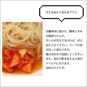 ぴょんぴょん舎 盛岡冷麺2食入 16496|iwatekensan-netshop|04
