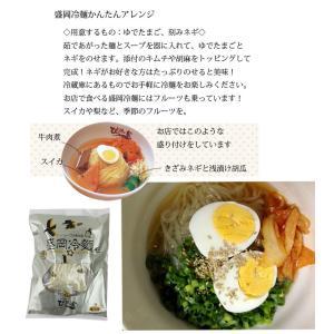 ぴょんぴょん舎 盛岡冷麺2食入 16496|iwatekensan-netshop|05