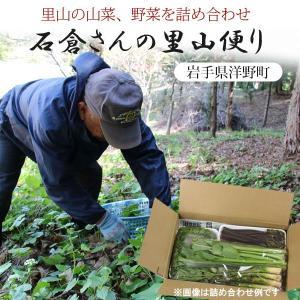 山菜と季節の野菜 詰め合わせ  予約受付中|iwatekensan-netshop