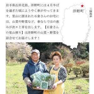 山菜と季節の野菜 詰め合わせ  予約受付中|iwatekensan-netshop|02