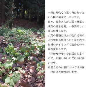 山菜と季節の野菜 詰め合わせ  予約受付中|iwatekensan-netshop|03