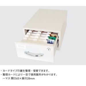 (送料無料)タチバナ製作所 カードキーボックス Kタイプ引出式 K-33N(メーカー直送品 代引決済不可)|iwauchi-kanamonoten