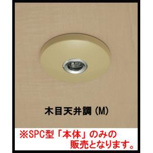 (メール便 可 6個まで) 川口技研 室内用 物干し ホスクリーン SPC-M型 共通本体のみ ベージュ 木調天井用 (1個)|iwauchi-kanamonoten