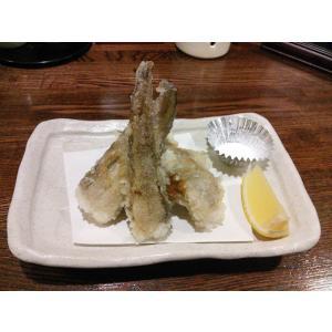 ゲンゲ 幻魚 水魚 ドギ 日本海 ご当地グルメ フライ 天ぷら げんげドレス 500g|izakayaouentai