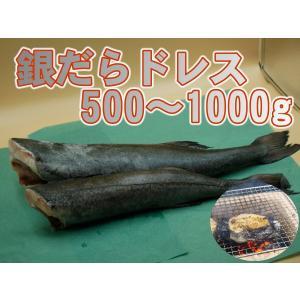 銀鱈 銀たら 銀ダラ 脂抜群 高級魚 業務用 銀だらドレス1〜2ポンド 1尾売り izakayaouentai