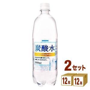 サンガリア 炭酸水 ペット1L 1000ml 24本(12本...