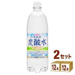 【2CS】サンガリア 伊賀の天然水炭酸水ペットボトル1L(12本入)×2ケース