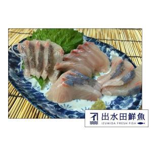 カンパチ 刺身用ブロック 活〆 鹿児島産|izumida-sengyo