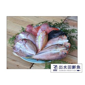 干物セット 創業40年の魚屋が厳選した「鯛の干物セット」 無添加 熟成乾燥|izumida-sengyo