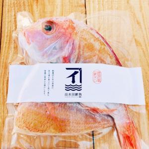 干物 れんこ鯛の一夜干し 無添加 熟成乾燥|izumida-sengyo