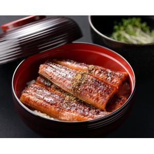 うなぎの蒲焼 2尾入り 鹿児島産 土用の丑 izumida-sengyo