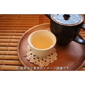 安全安心!出雲の発芽はと麦茶(30包入・業務用) 国産ハトムギ100%|izumo|02
