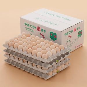 米たまご10kg(桜玉 山口県産)