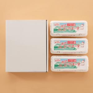 米たまご30個(桜玉 山口県産)