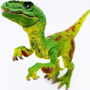 恐竜フィギア トリケラトプス ヴェロキラプトル | パラサウロロス プテラノドン ティラノサウルス ステゴサウルス ティラノサウルス|izushabotenhonpo