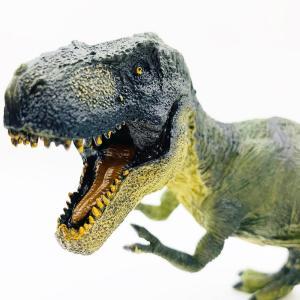 恐竜フィギア ティラノサウルス | パラサウロロス プテラノドン ティラノサウルス ステゴサウルス ティラノサウルス|izushabotenhonpo