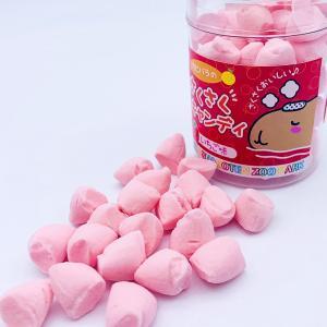 伊豆シャボテン本舗 さくさくキャンディー とろとろ サクサク あめ どうぶつ カピバラ カワウソ ハシビロコウ|izushabotenhonpo