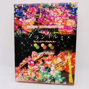 伊豆シャボテン本舗 グランイルミマーブルクッキー 12枚入  クッキー お菓子 マーブル 限定 お土産|izushabotenhonpo