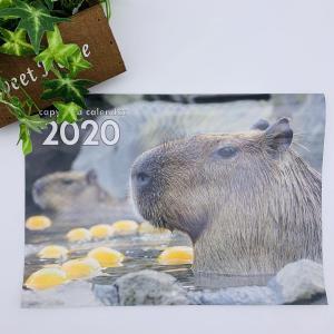 カピバラカレンダー | 伊豆シャボテン動物公園 カピバラ 人気 問い合わせ殺到 2020年 カレンダー|izushabotenhonpo