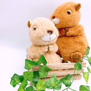 おねだりカピちゃん(M)高さ21cm  | ふわふわ 手触り 人気の動物 カピバラぬいぐるみ kapibara|izushabotenhonpo