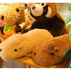 伊豆シャボテン本舗 ぬいぐるみ カピバラ ブラウン ベージュ自宅で相席 Lサイズ50cm ボールチェーン 2点セット|izushabotenhonpo