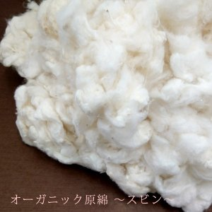 【送料無料対象外】オーガニック原綿・スビン(1kg)【他商品との同梱不可】|j-gift