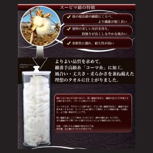 【送料無料対象外】プラチナタオル -Platinum Towel-(バスタオル1枚 専用化粧箱入り)高級綿スーピマ100%使用|j-gift|14