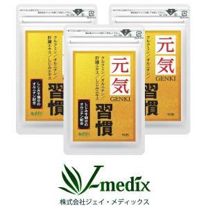 ウコン サプリメント  肝臓エキス オルニチン 元気習慣 90粒×3袋 約90日分 クルクミン サプリ|j-medix