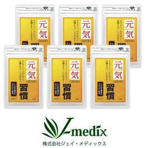 ウコン サプリメント  肝臓エキス オルニチン 元気習慣 90粒×6袋 約180日分 クルクミン サプリ|j-medix