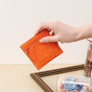 ミニ財布レディースオーストリッチ ミニ財布 小銭入れ カードケース / レディース[ネコポスで送料無料]|j-white
